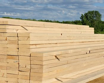 Fundamentals Affecting Our Investments in Housing, Lumber and Timber