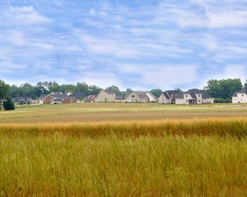 January Pulse: Conversion of Farmland Should Cost Developers