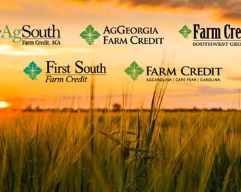 LANDFLIP Forms Affiliation with Seven Independent Farm Credit Institutions To Help Buyers Gain Access to Land Financing