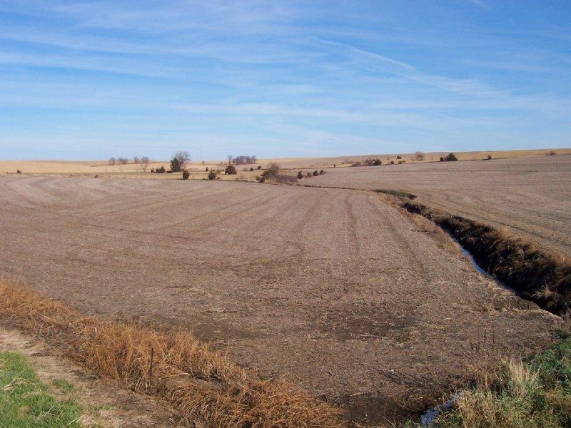 Farmland Auction : Wahoo : Saunders County : Nebraska