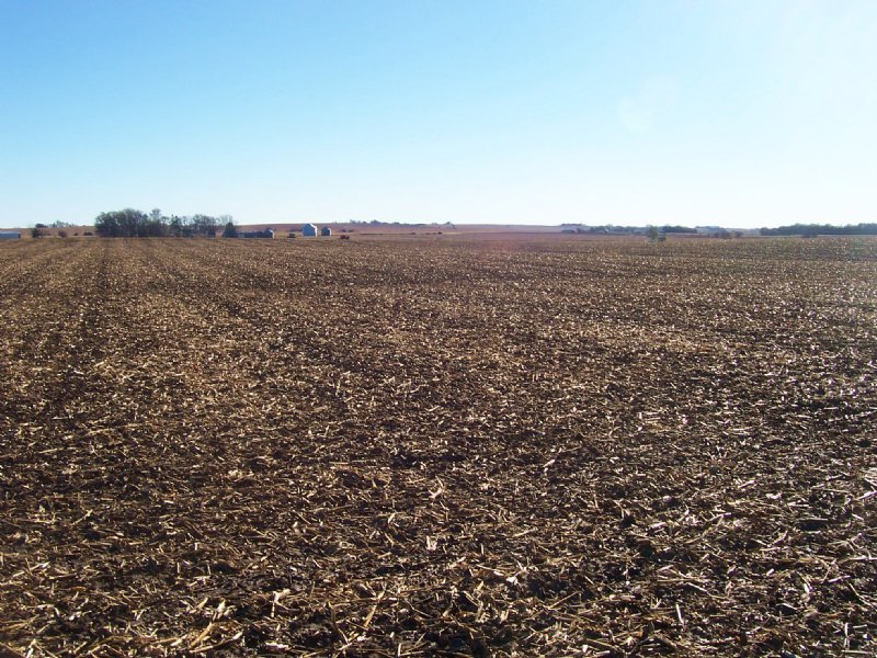Irrigated Farmland Auction : Cedar Bluffs : Saunders County : Nebraska