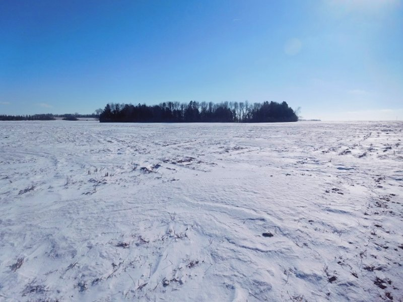 Quality Farm Land Near Brookings : Brookings : Brookings County : South Dakota