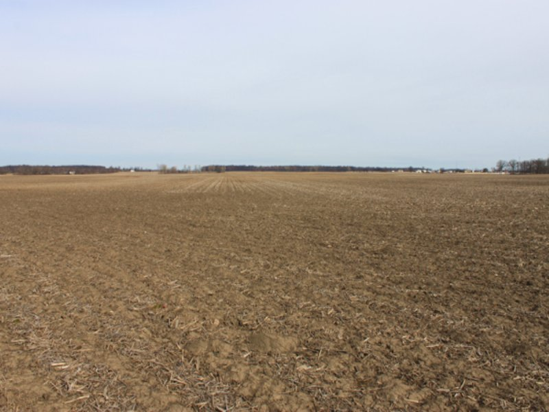517 Acres Super Grain Farm : Delaware : Delaware County : Ohio