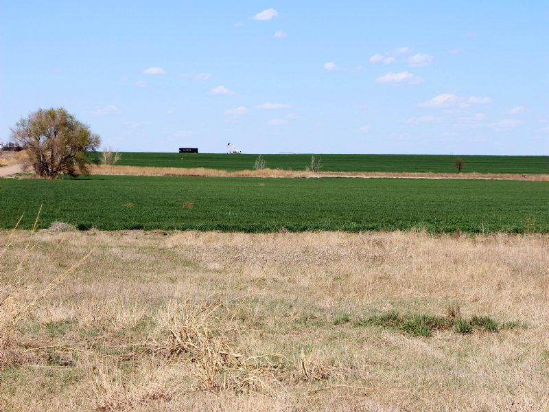 Deerfield Farmland Auction : Deerfield : Finney County : Kansas