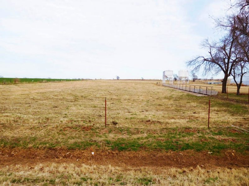 20 Acres With Cattle Facility : Custer City : Custer County : Oklahoma