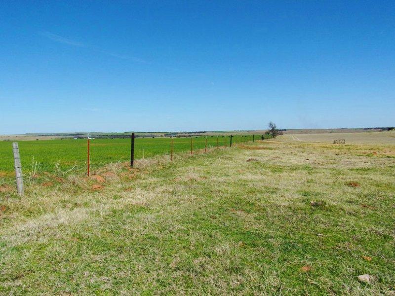 160 Acres Cropland & Grassland : Hydro : Caddo County : Oklahoma