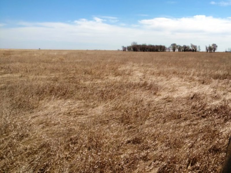 Farm And Rec Land With Quality Soil : Artesian : Sanborn County : South Dakota