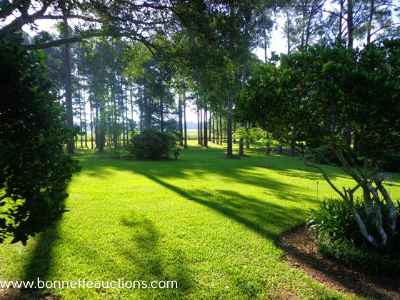 Real Estate & Antique Auction : Bunkie : Avoyelles Parish : Louisiana