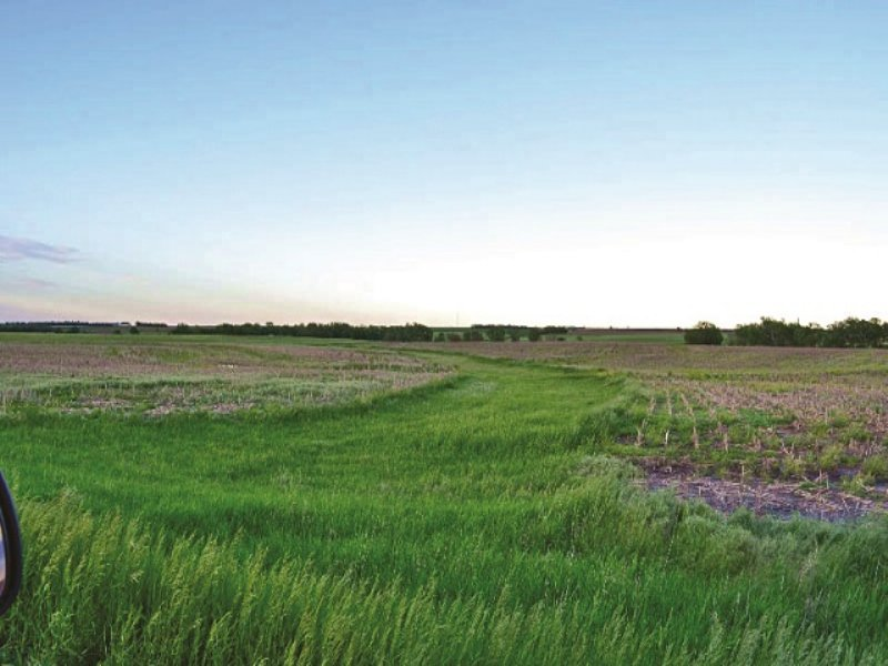 Kansas Farmland Auction : Glasco : Cloud County : Kansas
