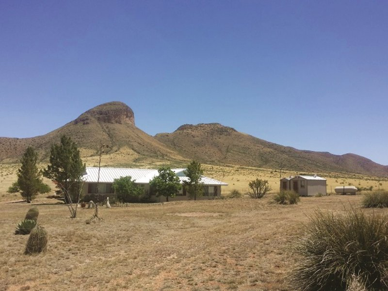 Arizona Ranch Auction : Elgin : Santa Cruz County : Arizona