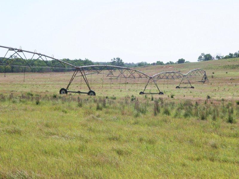 Grassland & Farmland : Colony : Washita County : Oklahoma