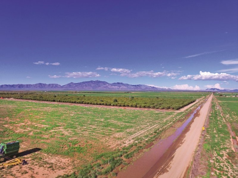 Multi-parcel Land Auction : Willcox : Cochise County : Arizona
