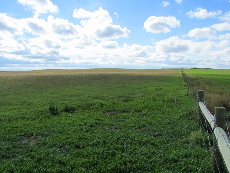 154.94+/- Acres Of Crop Land : Orient : Hand County : South Dakota