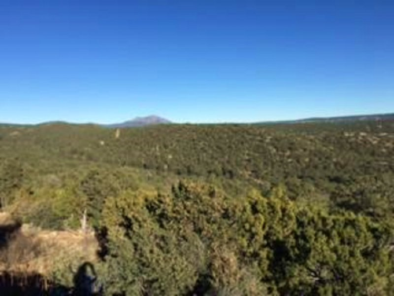 Court-ordered Land Auction : Tijeras : Bernalillo County : New Mexico