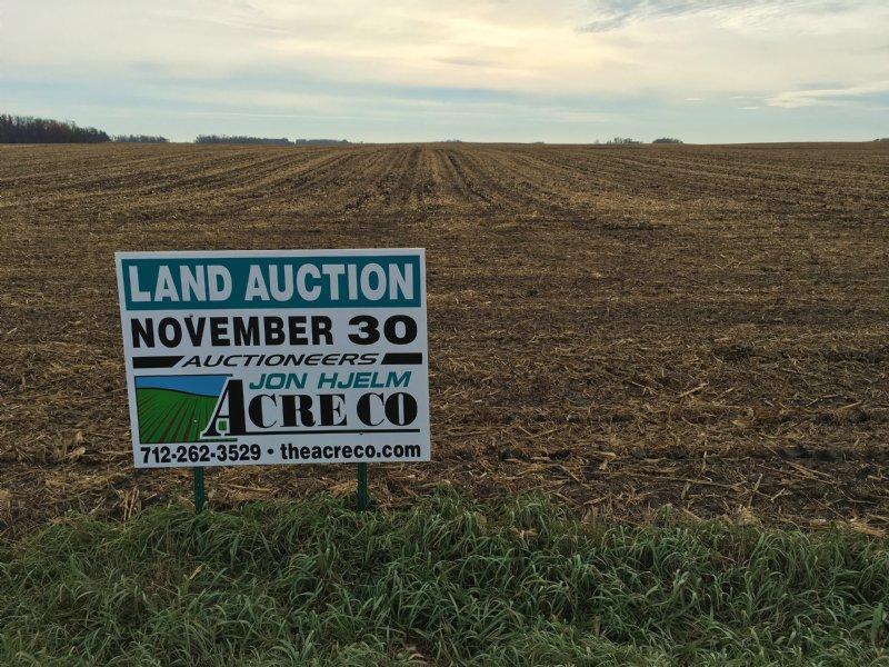80 Acre All Tillable Farm : Ocheyedan : Osceola County : Iowa