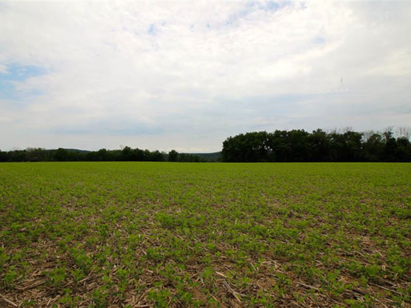 10+/- Acres Land, Building Lot : Millville : Columbia County : Pennsylvania
