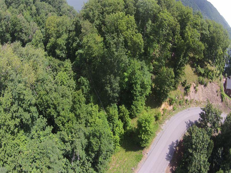Cherokee Lake Lot at Bargain Price : Whitesburg : Hawkins County : Tennessee