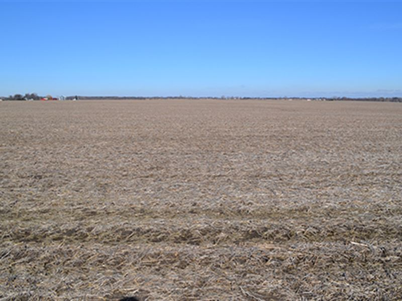 Land Auction - 91 Acres In 3 Tracts : Hebron : Lake County : Indiana