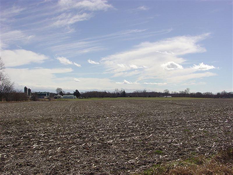 Real Estate Auction - 114.27 Acres : Auburn : DeKalb County : Indiana