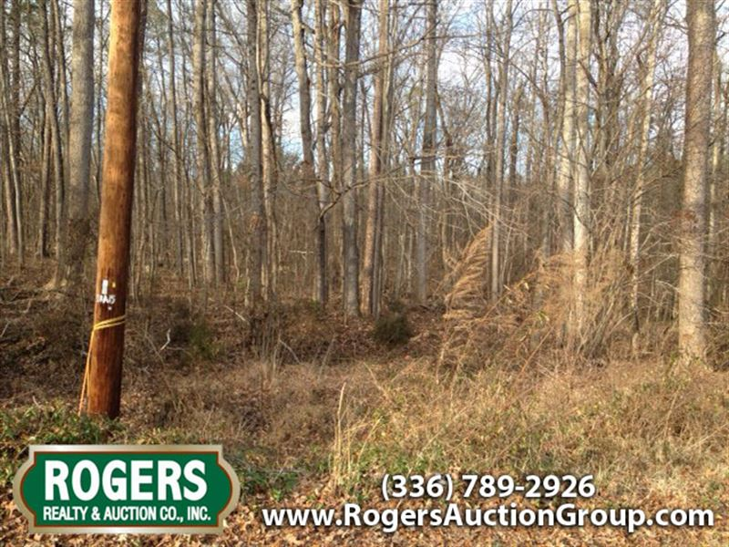4 Acres Marketable Timber : High Point : Guilford County : North Carolina