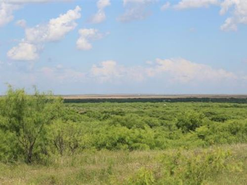 Hudson Cattle Ranch Auction : Electra : Wichita County : Texas