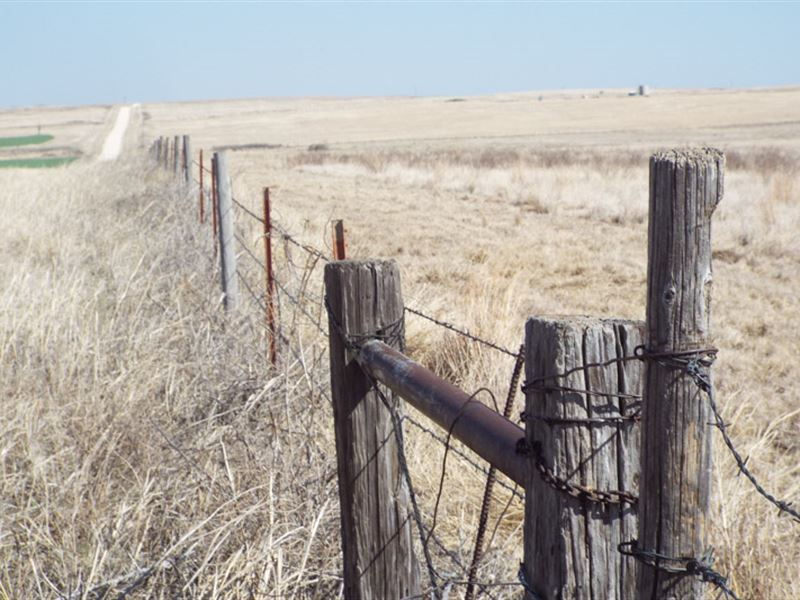 Pasture Perfect For Ranching : Shattuck : Ellis County : Oklahoma