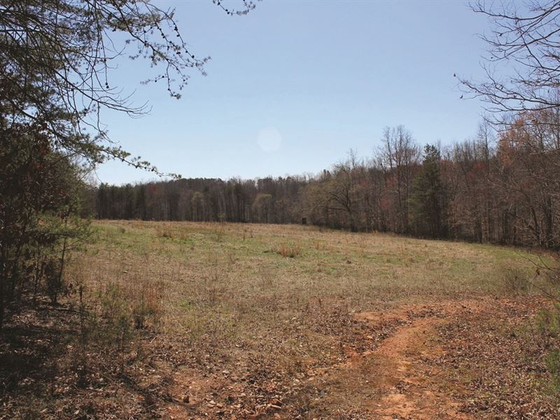 Spectacular Nc Land Auction : Madison : Stokes County : North Carolina