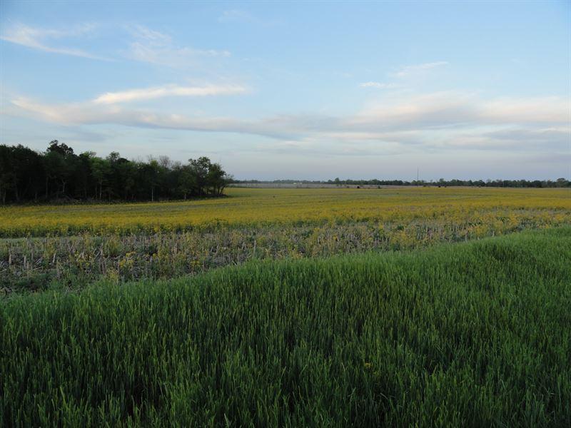 290+/- Acres Of Premier Dev Land : Glendale : Hardin County : Kentucky