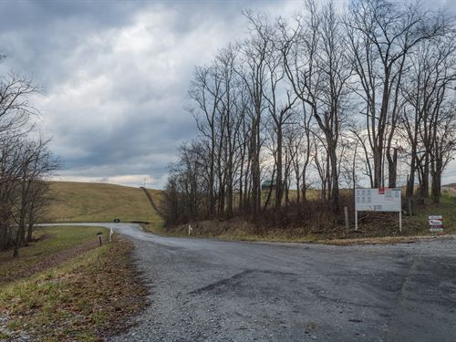 Harrison County Farm Auction : Jewett : Harrison County : Ohio
