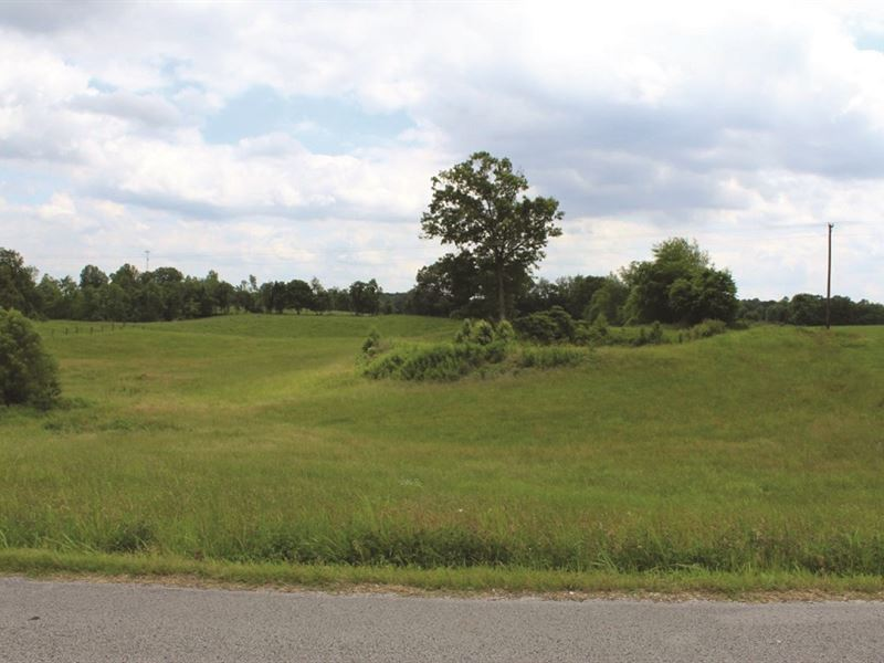 Auction - Residential Building Lot : Bowling Green : Warren County : Kentucky