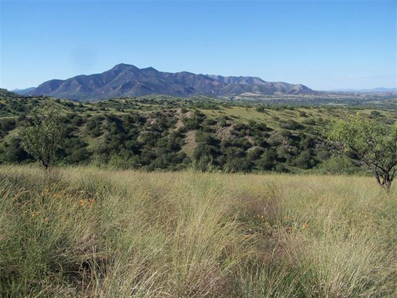 36+/- Acres Located Two Miles No : Patagonia : Santa Cruz County : Arizona