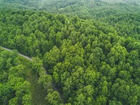Wooded Acreage With Great Views : Ferrum : Franklin County : Virginia