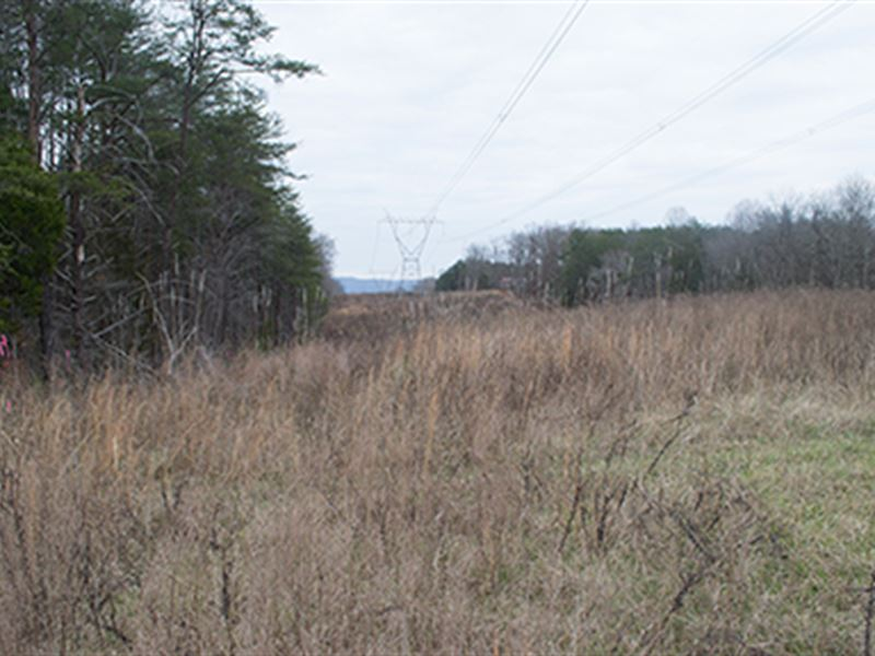 53.88 Acres In 6 Tracts : Cookeville : White County : Tennessee