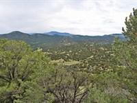 Auction - Co Rocky Mountain Land : Cañon City : Fremont County : Colorado