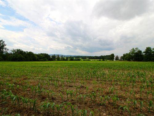 11+/- Acres Land, Building Lot : Bloomsburg : Columbia County : Pennsylvania