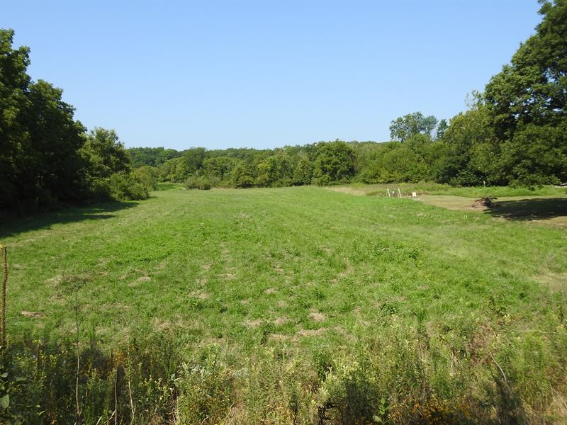 Cropland, Pasture & Wooded Acreage : Casey : Cumberland County : Illinois