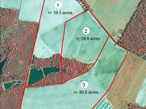 179+/- Acre Farm Land In Nc : Rockingham : Richmond County : North Carolina