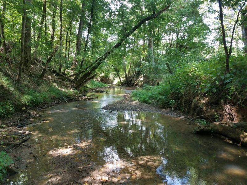 311 Acres & 8 Acres In Tennessee : Newport : Blount County : Tennessee