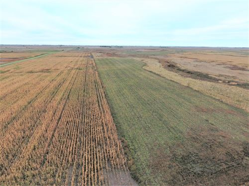 961.97+/- Acres Of Cropland & Grass : Columbia : Brown County : South Dakota