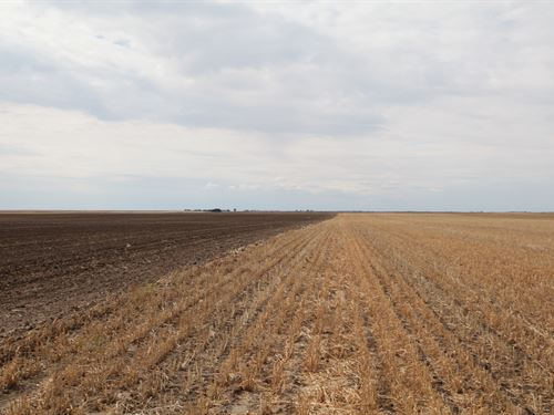 Ebke-Hagemann Land Auction : Chappell : Deuel County : Nebraska