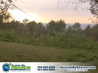 Fantastic Brow Property : Mentone : De Kalb County : Alabama