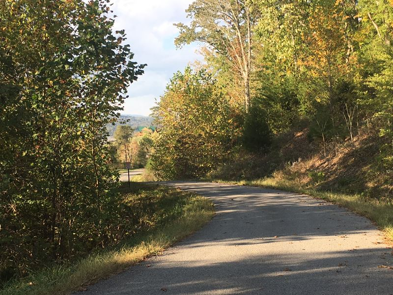 Norris Lakefront Lot : Sharps Chapel : Union County : Tennessee