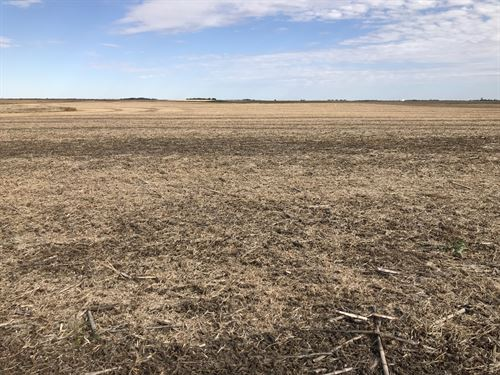 Brown County Farm Land Auction : Aberdeen : Brown County : South Dakota