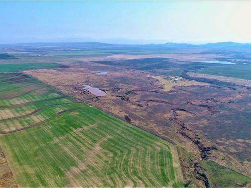 Oklahoma Hunting Land For Sale : Carnegie : Caddo County : Oklahoma