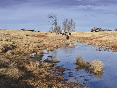 Auction - 429+/- Acre Ranch : Rush Springs : Oklahoma County : Oklahoma