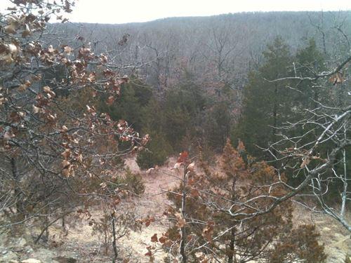 Sells to Highest Bidder at Auct : Pleasant Hope : Polk County : Missouri