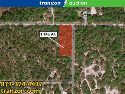 1+/- Ac Corner Lot : Crystal River : Citrus County : Florida