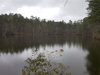 Development Potential, Timber, Lake : Waverly Hall : Harris County : Georgia