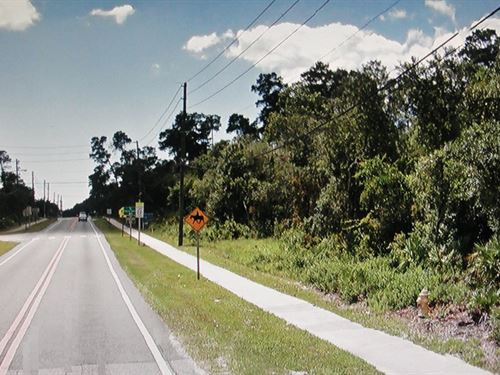 Homesite Acreage Or Multi-Use : Deltona : Volusia County : Florida