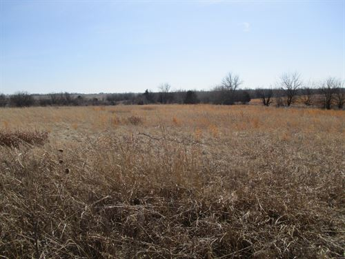 Grass & Pond, Hunting, Tillable : South Haven : Sumner County : Kansas